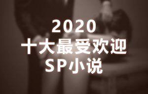 2020十大最受欢迎SP小说